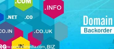 latest_articles-370x160-1051-1502021563-backorder ثبت دامنه .EU