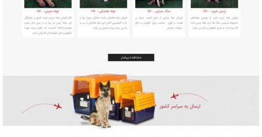 latest_articles-535x280-1352-1522055261-designing-online-iran-dogs-land نمونه طراحی سایت فروشگاهی